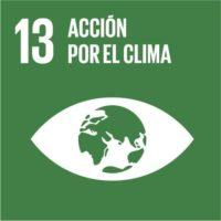 ODS 13: Adoptar medidas urgentes para combatir el cambio climático y sus efectos