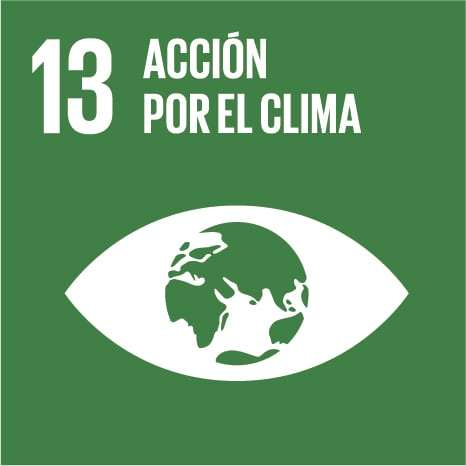 ODS 13: Adoptar medidas urgentes para combatir el cambio climático y sus efectos