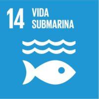 ODS 14: Conservar y utilizar en forma sostenible los océanos, los mares y los recursos marinos para el desarrollo sostenible