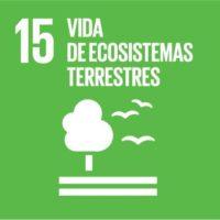 ODS 15: Gestionar sosteniblemente los bosques, luchar contra la desertificación, detener e invertir la degradación de las tierras y detener la pérdida de biodiversidad