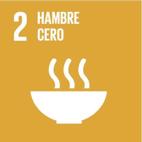 ODS 2: Poner fin al hambre, lograr la seguridad alimentaria y la mejora de la nutrición y promover la agricultura sostenible