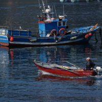 Pescadores de Vigo contra la basura en el mar
