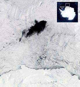Antártida, foca, polinia, Polynia, agua, frio, vientos