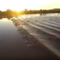 La ola 'mágica' del Amazonas