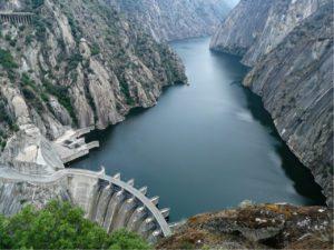 presas, agua, ecosistema