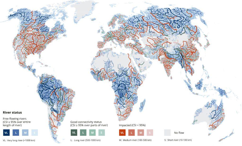 presas, ríos, agua, ecosistema