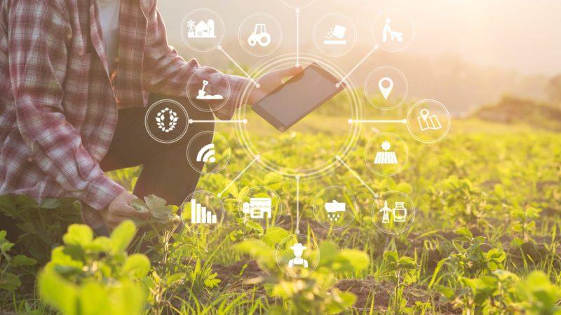 La inteligencia artificial revoluciona el uso del agua <br>en la agricultura
