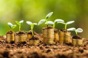 economía circular, verde, economía, cambio climático