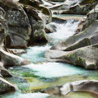 Premio a las cooperativas del Valle del Jerte por su eficiencia en el uso del agua