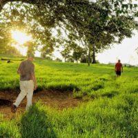 Baños de bosque: mejora tu salud y gana en bienestar