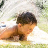 La primera ola del 2019 será muy cálida y seca