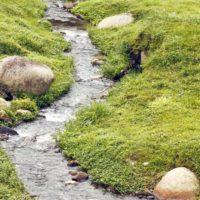 Una ecuación ayuda a predecir la ruptura de los diques fluviales