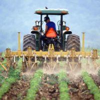 La agricultura planta cara a la crisis climática