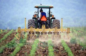 agricultura cambio climatico