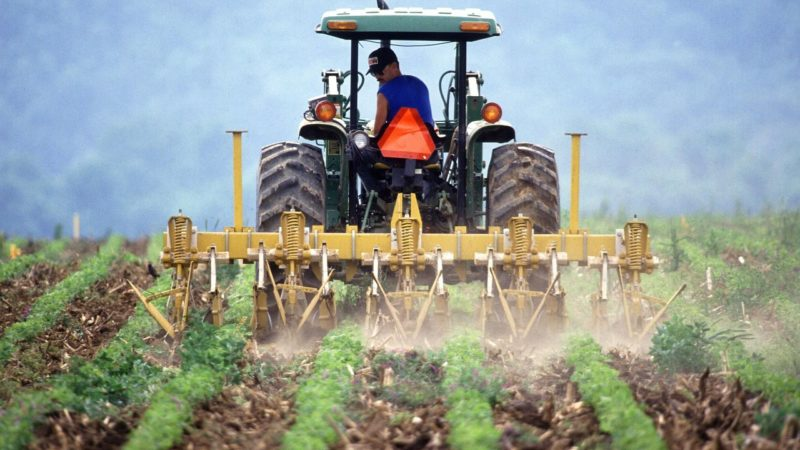Alarma en el campo: Europa propone un recorte del 14% de los fondos agrícolas