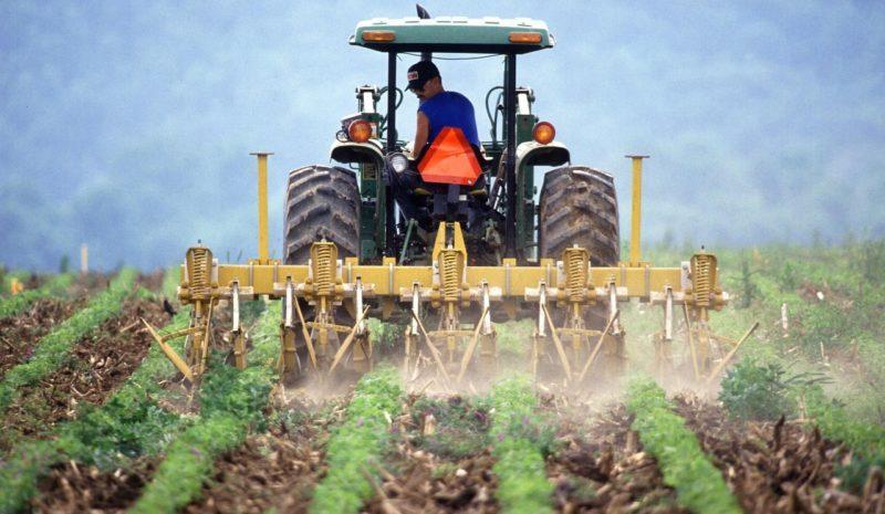 El Consejo Consultivo de Agricultura afronta un semestre clave para el futuro de la PAC