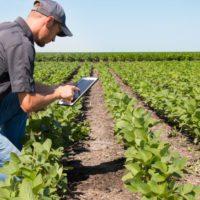 Alemania y la FAO impulsarán el rol de la agricultura frente al cambio climático