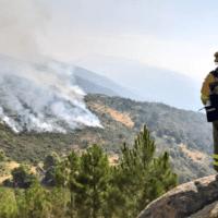 El fuego arrasó 10.282 hectáreas hasta marzo un tercio que hace un año
