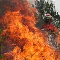 Portugal arde de nuevo