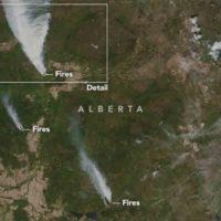El cambio climático motiva incendios por todo el planeta