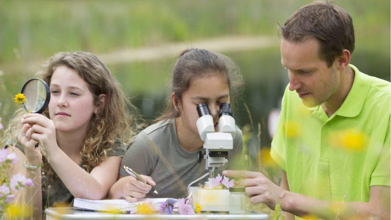 Los docentes piden más educación ambiental