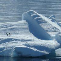 Los icebergs retrasarán el calentamiento global en el hemisferio sur