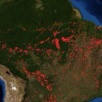 El fuego arrasa el Amazonas, el gran freno del cambio climático