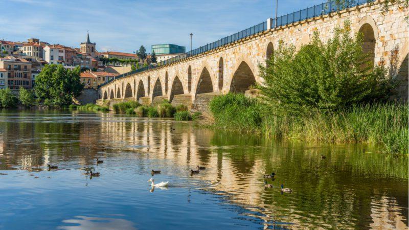 El tratamiento de las aguas urbanas cambia la biodiversidad de los ríos
