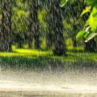 El año hidrológico 2019 es ya el tercero más seco del siglo XXI