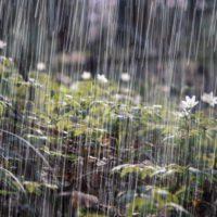 Los fenómenos de lluvias torrenciales pueden alterar la recarga natural de los acuíferos
