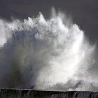 'Aquarela', la voz más salvaje e impactante del agua