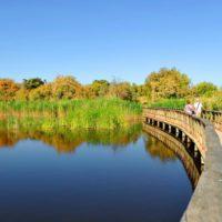 Las Tablas de Daimiel acaban el verano con sólo el 7,42% de su superficie inundada