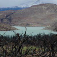 """Chile afronta una """"complicada"""" temporada de incendios forestales por la sequía"""