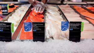 Pescados con Sello Azul de MSC