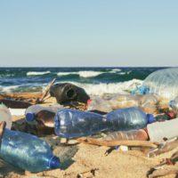 La isla Inaccesible se llena de plásticos