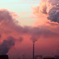 Los científicos declaran la emergencia climática