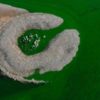 El agua vuelve a cubrir el dolmen de Guadalperal