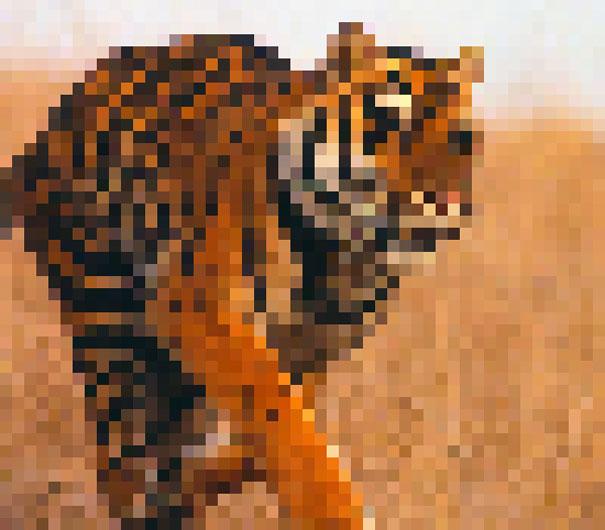 Un píxel, un animal vivo
