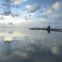 Expertos piden invertir en agricultura sostenible para salvar el Mar Menor