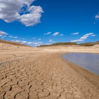 Las olas de calor de 2018 y 2019 han contribuido a la actual sequía