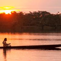 Las siete nuevas claves de investigación para frenar la pérdida de biodiversidad
