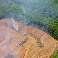La deforestación del Amazonas creció un 30% el último año