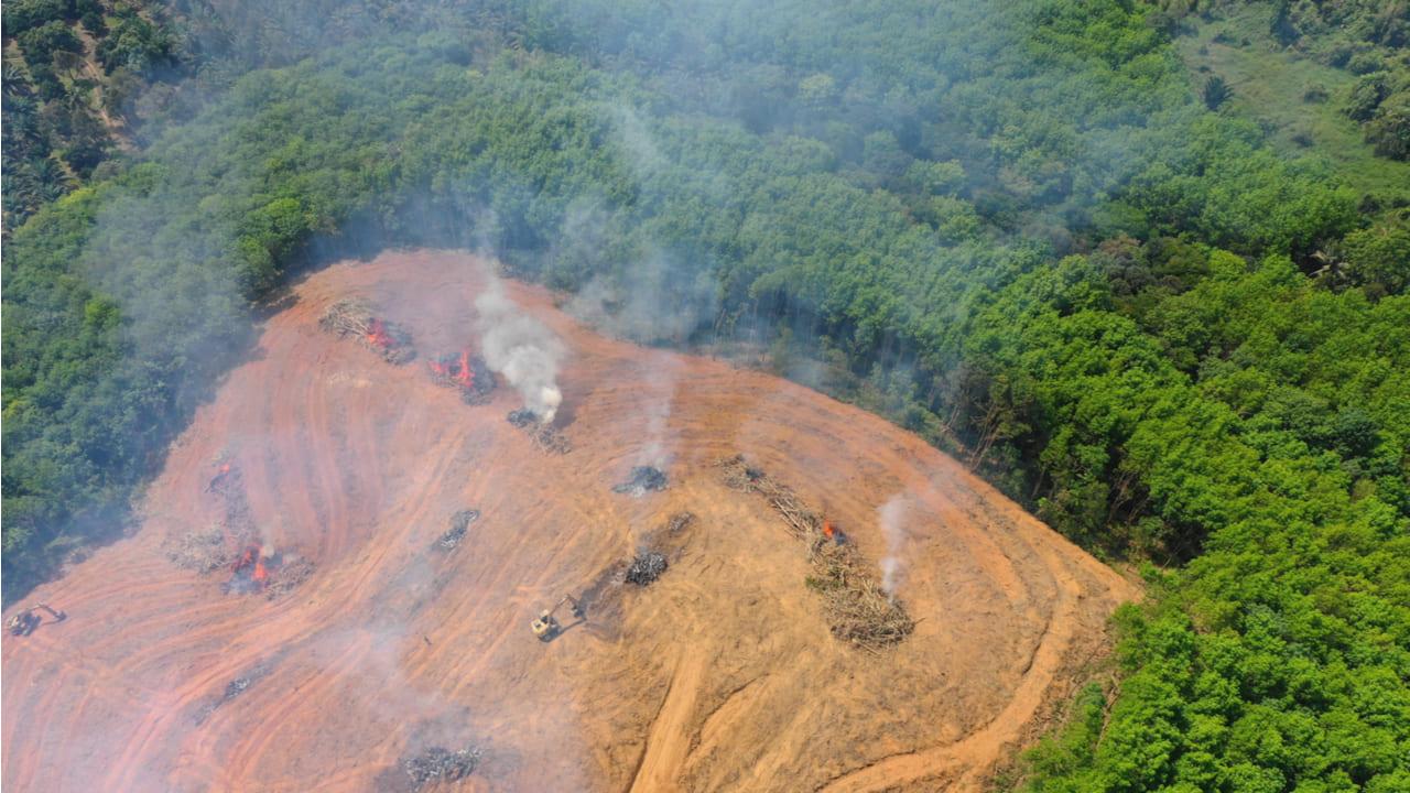 Deforestación-amazonas