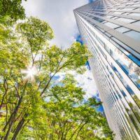 Actividad empresarial y capital natural convergen en Madrid