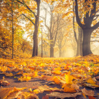 Octubre de 2019 bate récords de temperaturas
