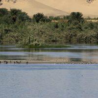 El río Nilo tiene 30 millones de años, seis veces más antiguo de lo que se creía