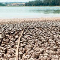 Expertos prevén la desertificación de Chile en cien años