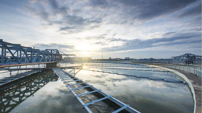 Biofactorías: el ejemplo del agua para la economía circular