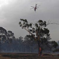 Los incendios continúan en Australia: más de 100.000 personas evacuadas en Melbourne
