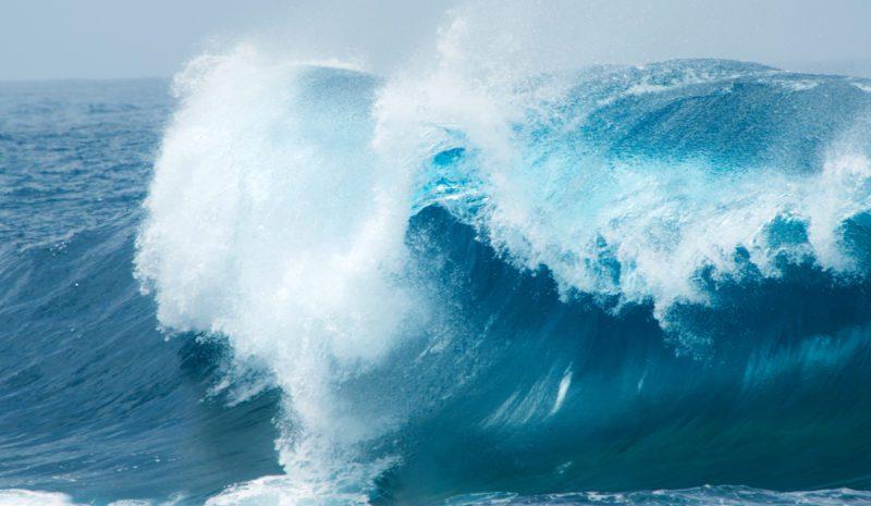 COP25: Las olas que yo necesitaba